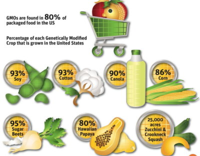 US-GMO-food-percentages-canola-corn-soy