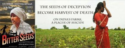 india-gmo-crops-tragedy